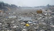 wasteland-1